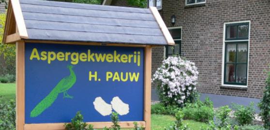 Aspergekwekerij H. Pauw