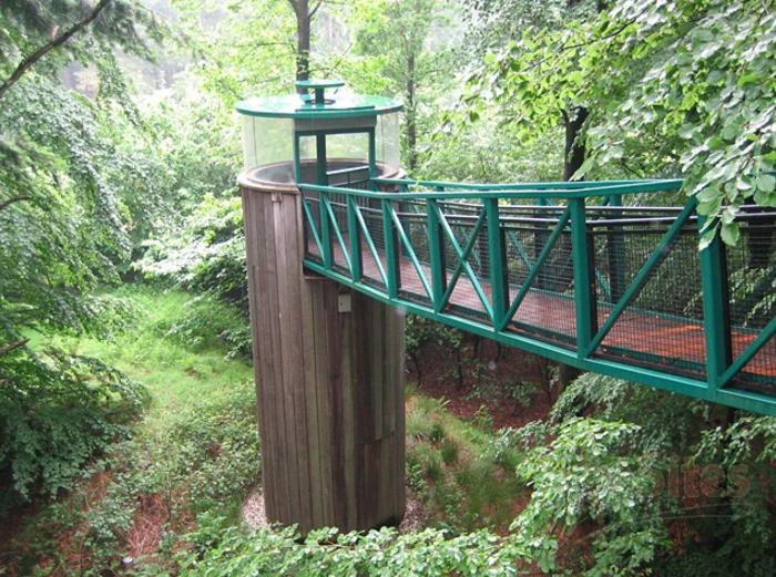 Boomkroonpad brug en toren