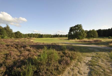 Drentse golfclub 'De Gelpenberg'