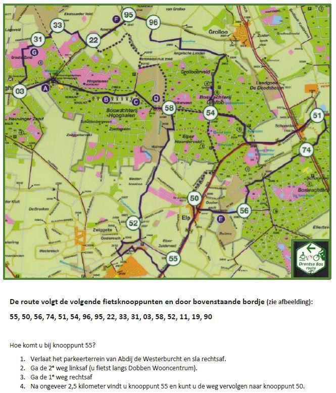 Drentse Bosroute | Heerlijk op de fiets in het bos