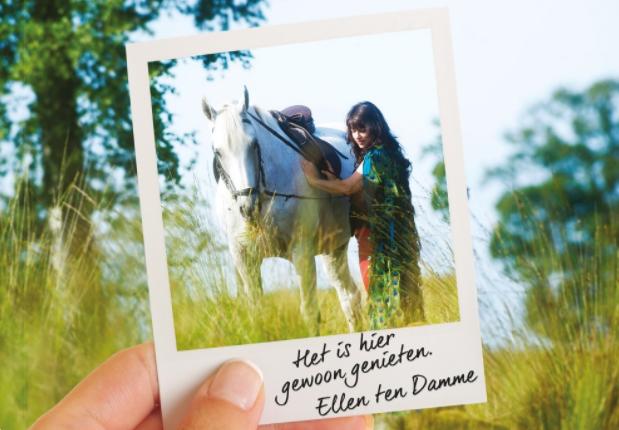 Ontdek Drenthe