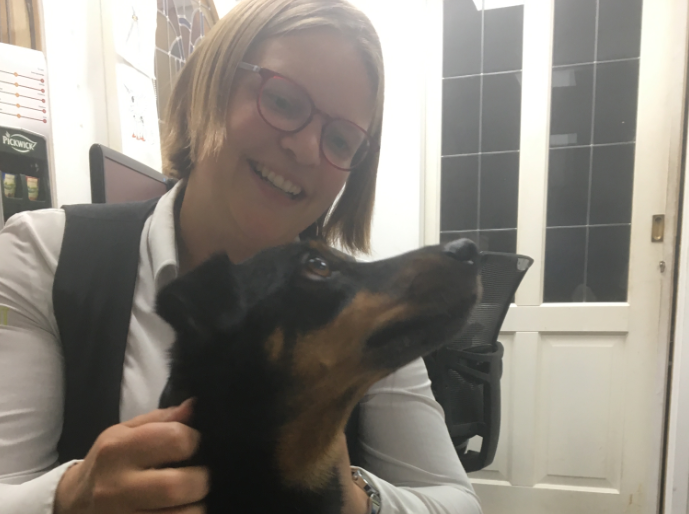 Hotel Drenthe met hond