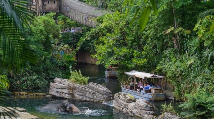 Wildlands Adventure Zoo | Verblijf op korte afstand van WILDLANDS