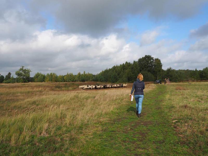 wandel arrangement Drenthe