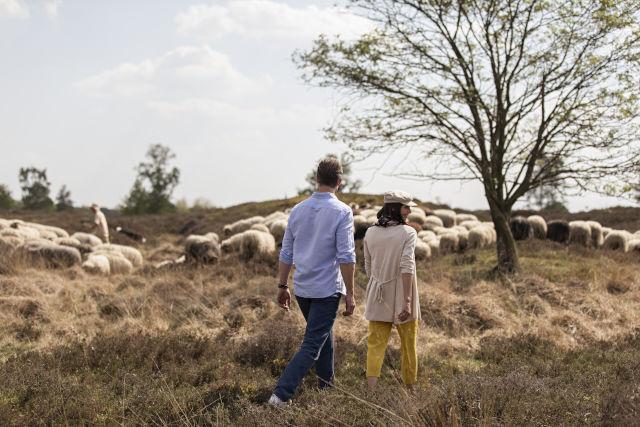 Happen en Stappen | De lekkerste wandeltocht van Drenthe!